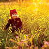 Photography of little girl in golden fields